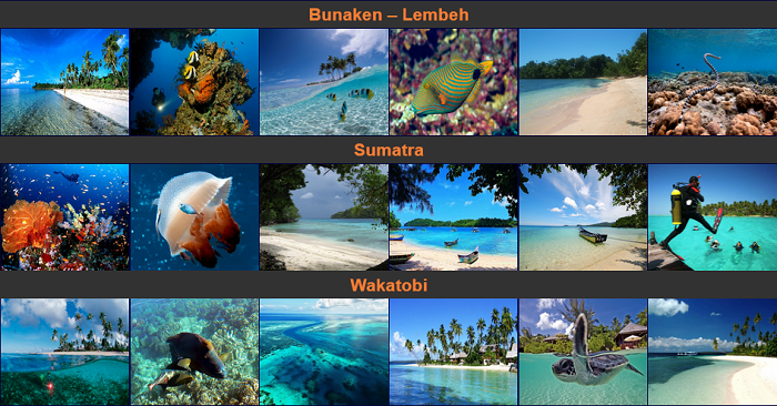 Nyaman Group Indonesia-diving cruise indonesia-diving cruise destinations