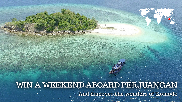 Nyaman Group - dive cruise in Komodo National Park - contest Perjuangan 2015