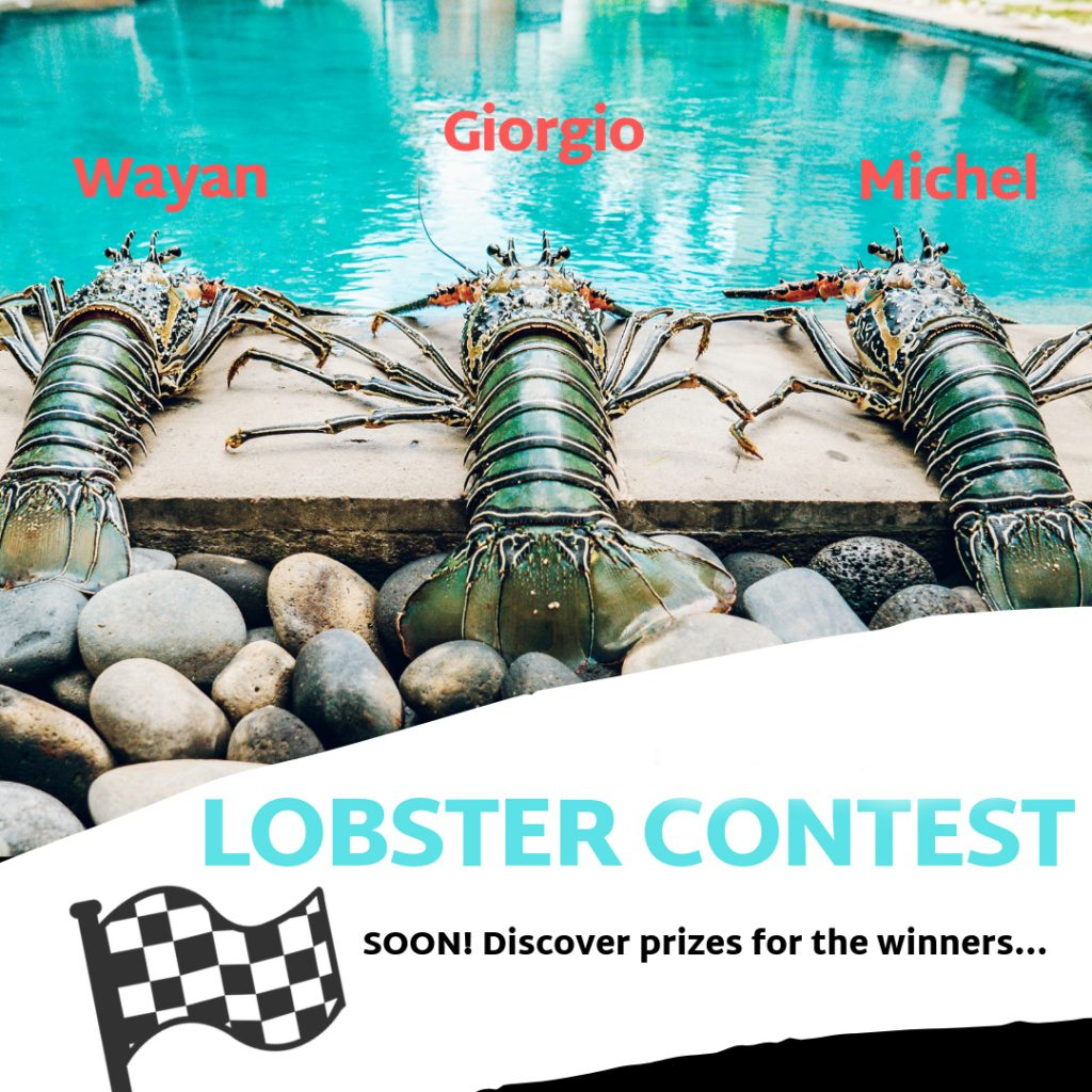 Nyaman-villas-lobster-contest