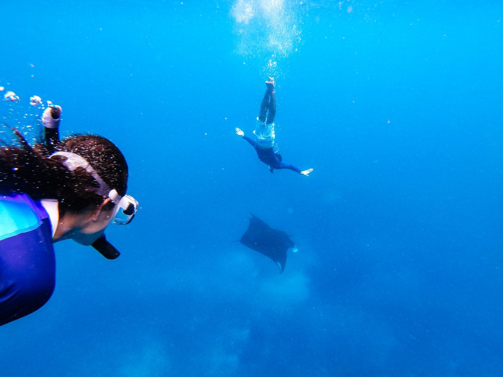 snorkeling-activity-at-manta-point-komodo-during-catamaran-sailing