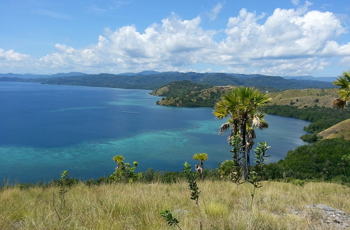 Nyaman Group Indonesia-Real Estate Flores-Invest in Flores island Indonesia