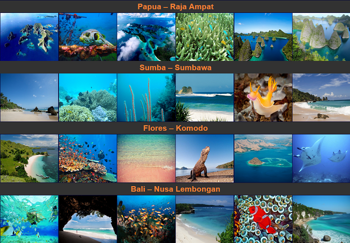 Nyaman Group Indonesia-diving cruise indonesia-amazing diving cruise destinations