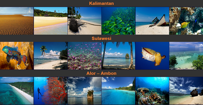 Nyaman Group Indonesia-diving cruise indonesia-more amazing diving cruise destinations